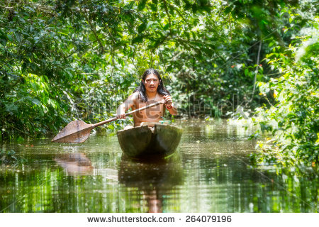stock-photo-indigenous-adult-man-on-typical-wooden-canoe-choped-from-a-single-tree-navigating-murky-waters-of-264079196 indien amazonie