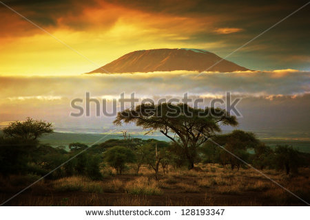 stock-photo-mount-kilimanjaro-and-clouds-line-at-sunset-view-from-savanna-landscape-in-amboseli-kenya-africa-128193347 kenya