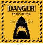 stock-vector-shark-sighting-sign-yellow-danger-shark-attack-background-296661959
