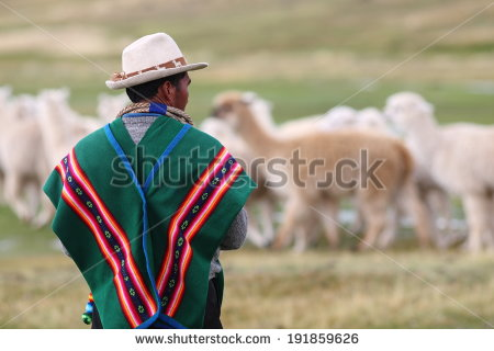 stock-photo-bolivian-herdsman-191859626