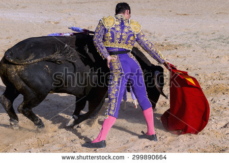 stock-photo-bullfighter-in-a-bullring-299890664 espagne
