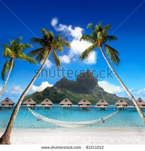 stock-photo-view-of-the-otemanu-mountain-through-the-palms-with-hammock-and-ocean-bora-bora-polynesia-81211012