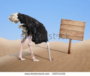 stock-photo-scared-ostrich-burying-head-in-sand-near-standing-blank-wooden-signboard-220741435