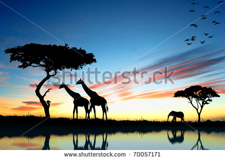 stock-photo-safari-in-africa-silhouette-of-wild-animals-reflection-in-water-70057171