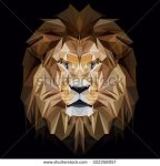 stock-vector-lion-low-poly-design-triangle-vector-illustration-322358057