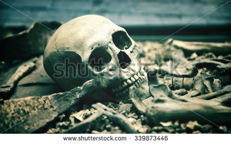 stock-photo-creepy-human-skull-in-an-open-grave-surrounded-by-the-bones-of-the-skeleton-in-a-macabre-background-339873446