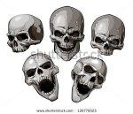 stock-vector-set-of-skulls-vector-illustration-126779525