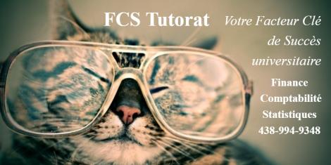 FCS Tutorat